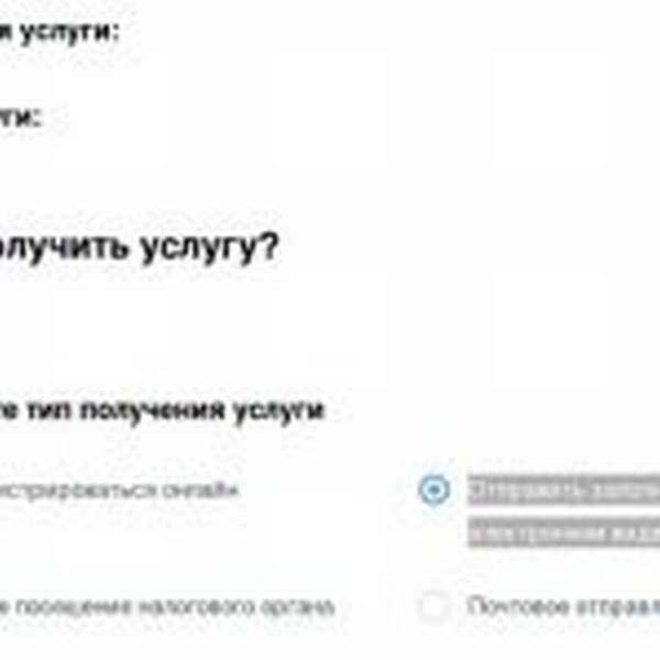 Скрин портала госуслуг, регистрация ИП, шаг № 4