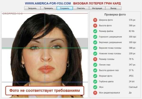 Скриншот страницы проверки фото на визу США