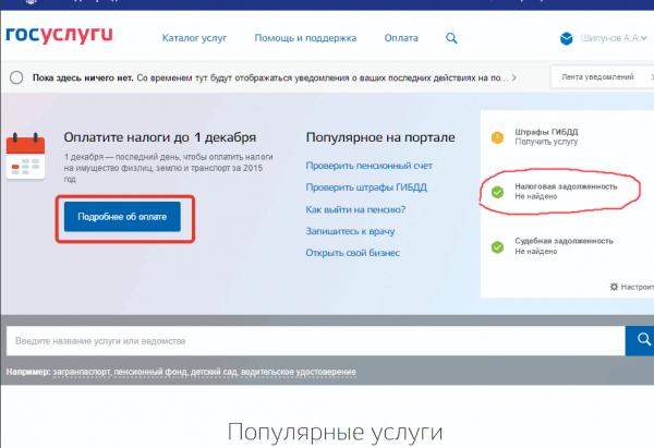Информеры на портале госуслуг, скриншот