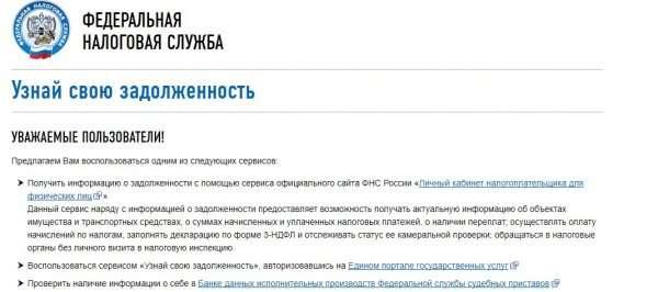 Скрин страницы с вариантами для выбора способа узнать задолженность на сайте ФНС