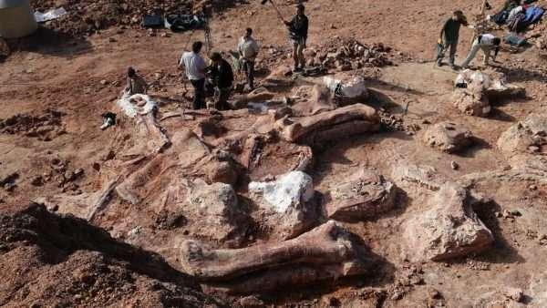 Кладбище динозавров в Монголии