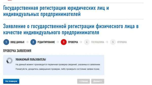 Скрин сайта ФНС РФ, онлайн-регистрация ИП, шаг № 9