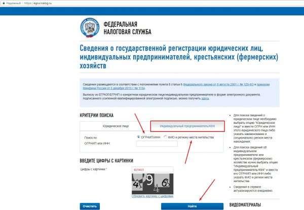 Страница сайта ФНС «Сведения о государственной регистрации ЮЛ и ИП», доступная к заполнению