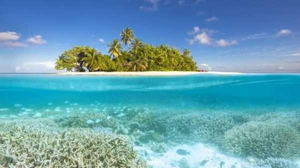 Коралловый остров