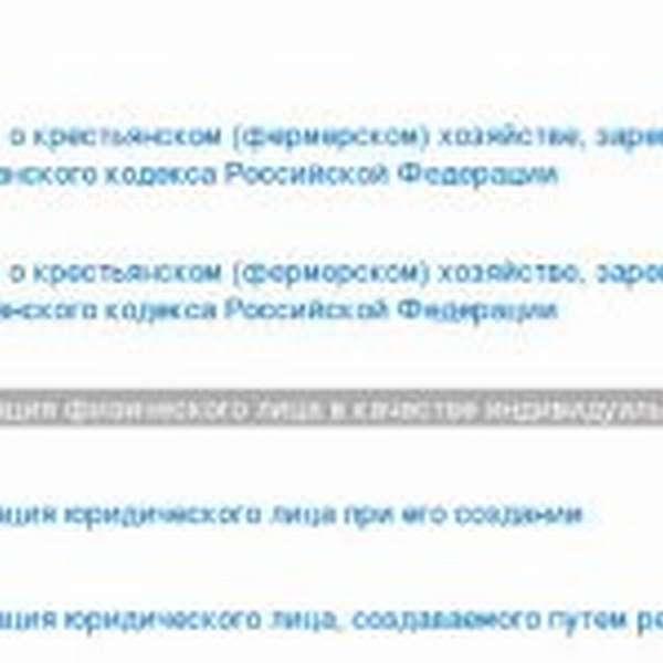 Скрин портала госуслуг, регистрация ИП, шаг № 3