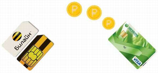 Как вывести деньги с Билайн на карту Сбербанка