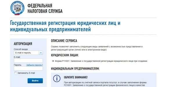 Скрин сайта ФНС РФ, онлайн регистрация ИП, шаг № 3