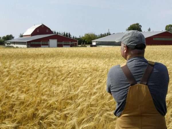 Глава фермерского хозяйства