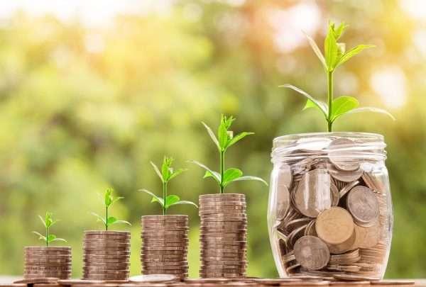 Столбики монет и зелёные ростки