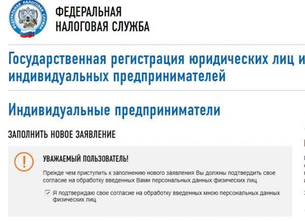 Скрин сайта ФНС РФ, онлайн-регистрация ИП, шаг № 4