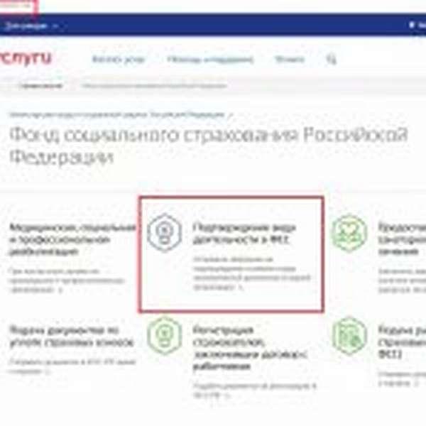 Страница портала Госуслуг с выделенными элементами (электронный адрес, название услуги)