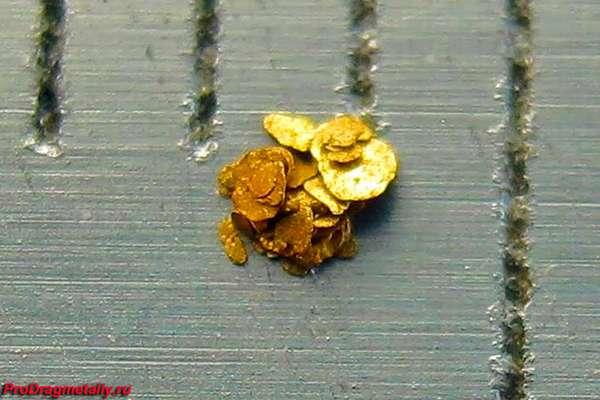 Кучка рассыпного золота