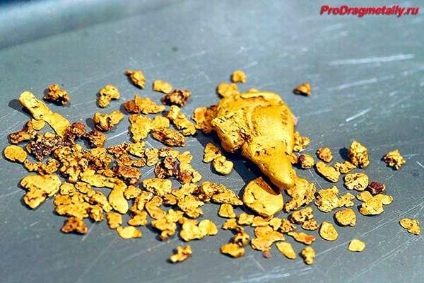 Добытое золото в чистом виде